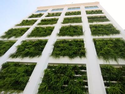 7. Penang, Malaysia building plants John Doan